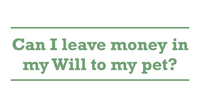 Can I leave money in my Will to my pet? | Genders - Adelaide
